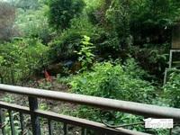 南桥圣菲 精品大三房 看中庭 带50平米大花园 买到就是赚到