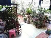 兴龙湖畔,金域蓝湾花园洋房,精装大三房,带屋顶花园,亏本急售